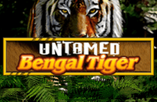 Демо автомат Untamed Bengal Tiger